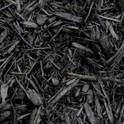 Blacked Dyed Mulch